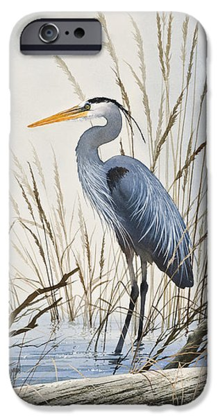 Heron Paintings iPhone Cases - Herons Natural World iPhone Case by James Williamson