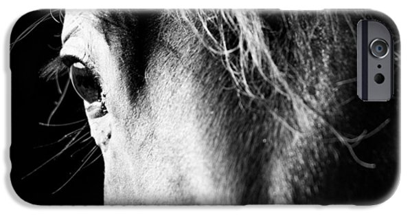 Wildlife Photographer iPhone Cases - Hes Seen It All... iPhone Case by Shelby  Young