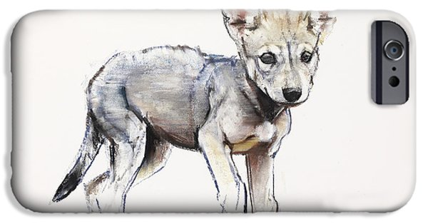 On Paper Paintings iPhone Cases - Hesitating Arabian Wolf Pup iPhone Case by Mark Adlington