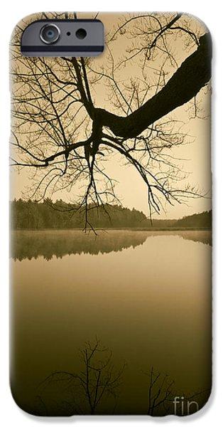 Hewitt Pond No. 2 - vertical iPhone Case by David Gordon