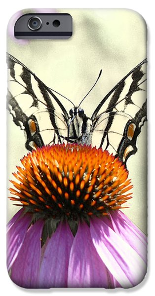 The Tiger iPhone Cases - Hey Bartender  iPhone Case by JC Findley