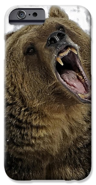 Animals iPhone Cases - Hey Bear iPhone Case by Wildlife Fine Art