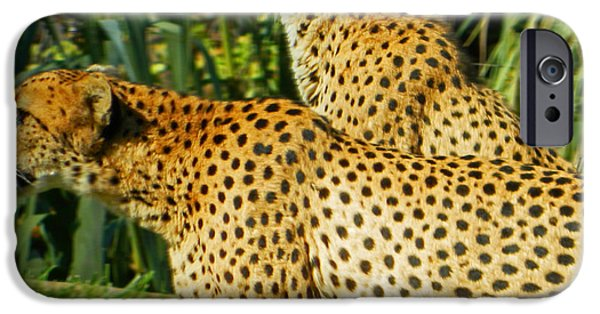 Smithsonian iPhone Cases - Hey Bro - Do You See What I See? iPhone Case by Emmy Marie Vickers