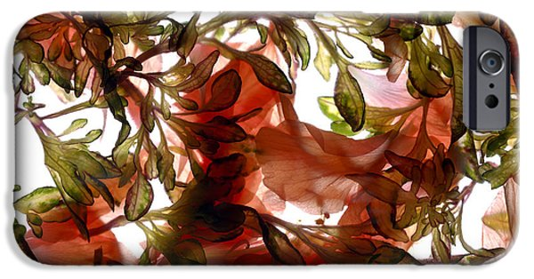 Hibiscus iPhone Cases - Hibiscus Coleus Array iPhone Case by Julia McLemore