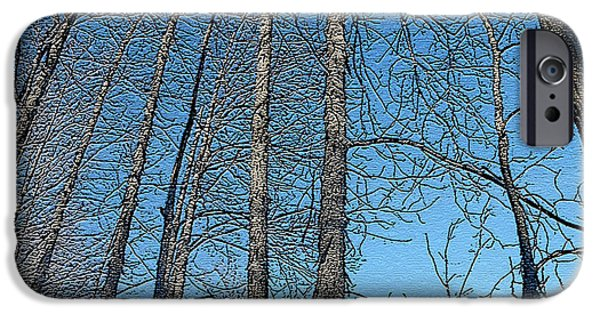 Wintertime iPhone Cases - Hickory Trees in Winter iPhone Case by Patricia Keller