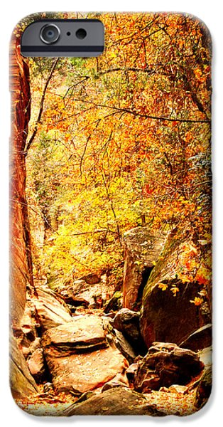 Pathway iPhone Cases - Hidden Canyon iPhone Case by Alan  Socolik