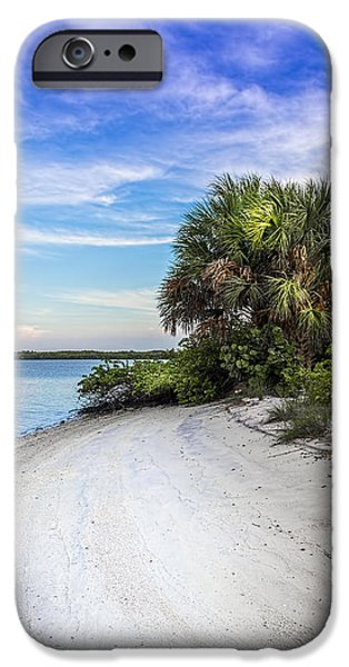 Park Scene iPhone Cases - Hidden Cove iPhone Case by Marvin Spates