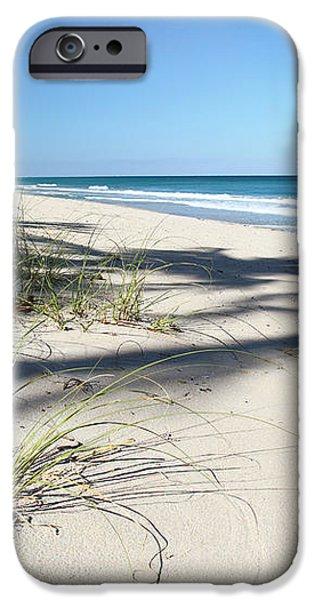 Hidden Palms iPhone Case by Michelle Wiarda