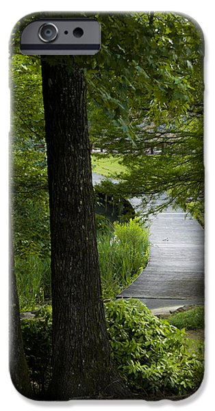 Overhang iPhone Cases - Hidden Pathway iPhone Case by Shelby  Young