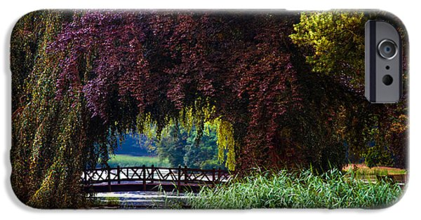 Garden Scene Photographs iPhone Cases - Hidden Shadow Bridge at the Pond. Park of the De Haar Castle iPhone Case by Jenny Rainbow