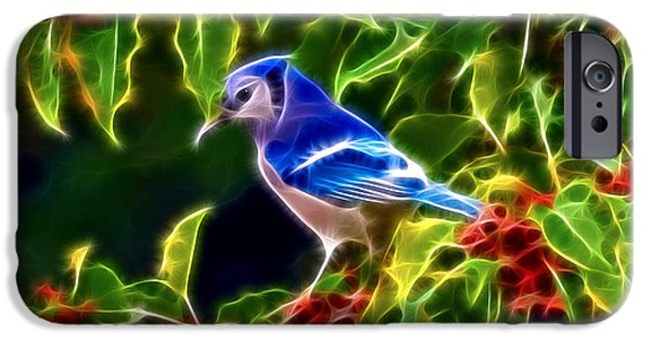 Bluejay iPhone Cases - Hiding in the Berries iPhone Case by Stephen Younts