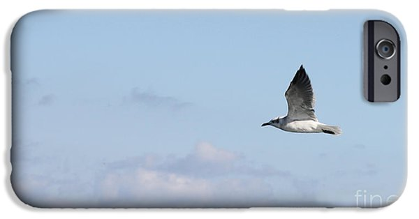 Flying Seagull iPhone Cases - High Above The Clouds iPhone Case by John Telfer