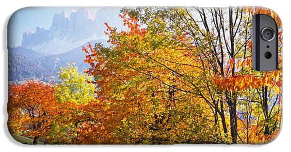 Mountain iPhone Cases - High Angle View Of Trees In A Forest iPhone Case by Panoramic Images