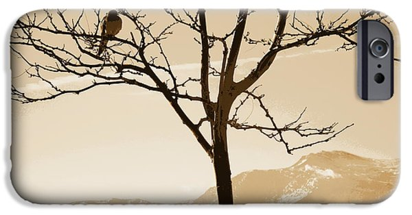 Mount Rose iPhone Cases - High Desert Treasure iPhone Case by Bobbee Rickard