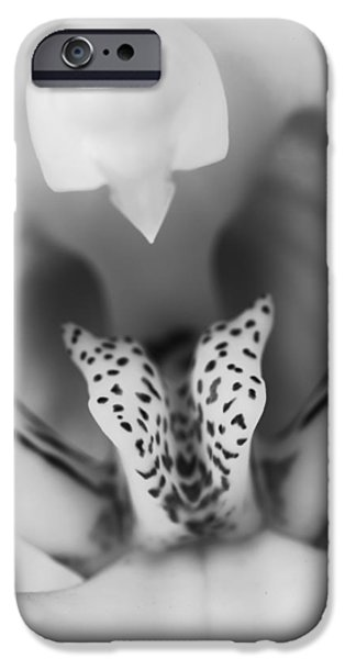 High Key Orchid iPhone Case by Adam Romanowicz