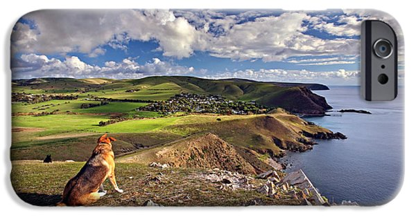 Fleurieu Peninsula iPhone Cases - High on a Hill Top iPhone Case by Bill  Robinson
