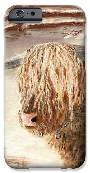 Highland Bull iPhone Case by Anastasiya Malakhova