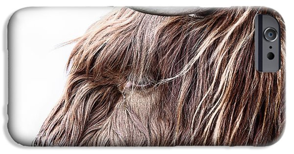 Snowy Day iPhone Cases - Highland Cow Color iPhone Case by John Farnan