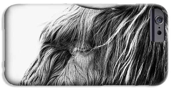 Snowy Day iPhone Cases - Highland Cow Mono iPhone Case by John Farnan