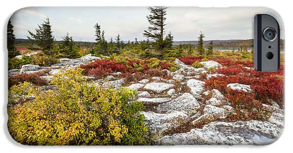 Sod iPhone Cases - Highlands of West Virginias Dolly Sods iPhone Case by Bill Swindaman