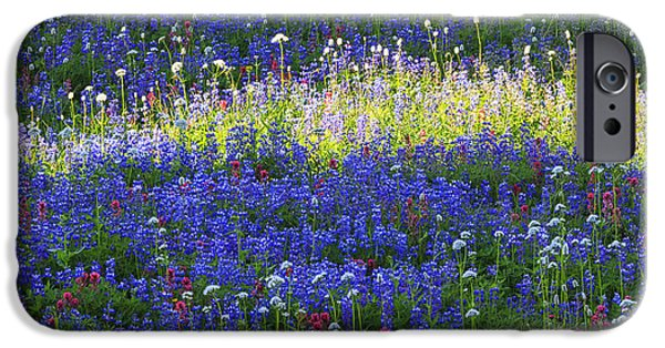 Floral Photographs iPhone Cases - Highlight of Wild flowers iPhone Case by Mark Kiver