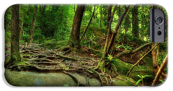 Tree Roots Photographs iPhone Cases - Hiking Along The River iPhone Case by Michael Eingle
