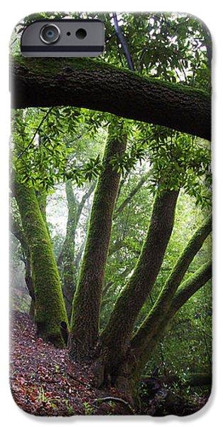 Hiking Huckleberry iPhone Case by Hugh Stickney