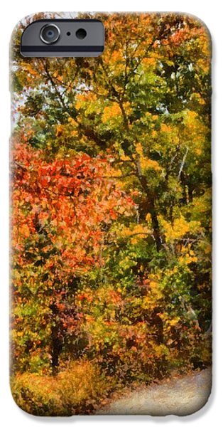 Pathway Mixed Media iPhone Cases - Hiking In Autumn iPhone Case by Dan Sproul