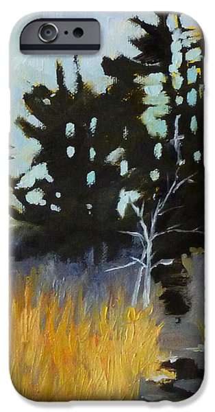 Deschutes River iPhone Cases - Hiking the Winter Trail iPhone Case by Nancy Merkle