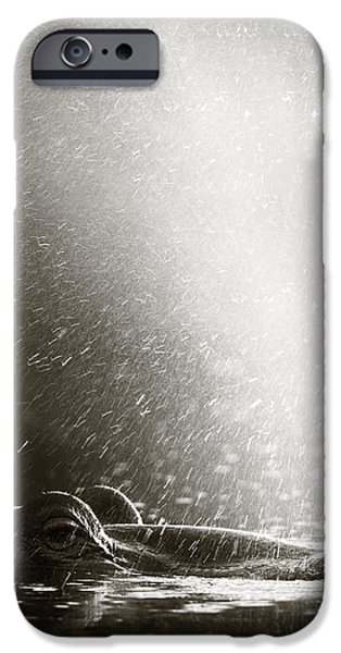 Hippo blowing  air iPhone Case by Johan Swanepoel