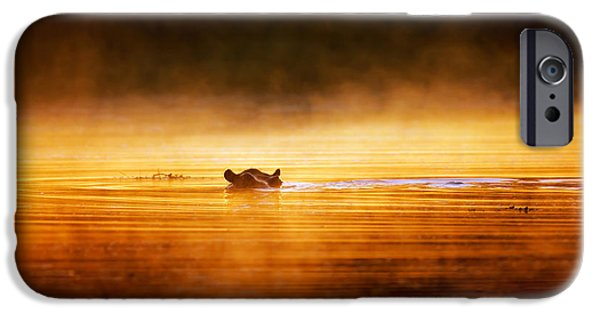 One Animal iPhone Cases - Hippopotamus at sunrise over misty river iPhone Case by Johan Swanepoel
