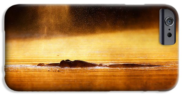 One Animal iPhone Cases - Hippopotamus blowing air at sunrise over misty river iPhone Case by Johan Swanepoel