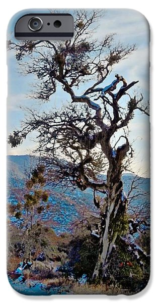 Hitchhiker on Highway 173 iPhone Case by Glenn McCarthy Art and Photography