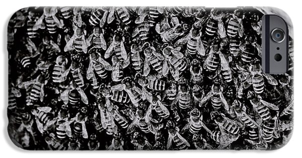 Killer B iPhone Cases - Hive in BnW iPhone Case by Ed  Cheremet