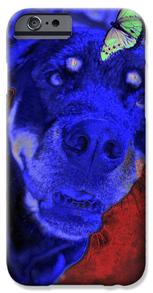 Chocolate Lab Digital Art iPhone Cases - Hocus Pokus iPhone Case by Mayhem Mediums