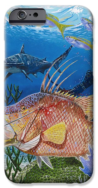 Goliath iPhone Cases - Hog Fish spear iPhone Case by Carey Chen