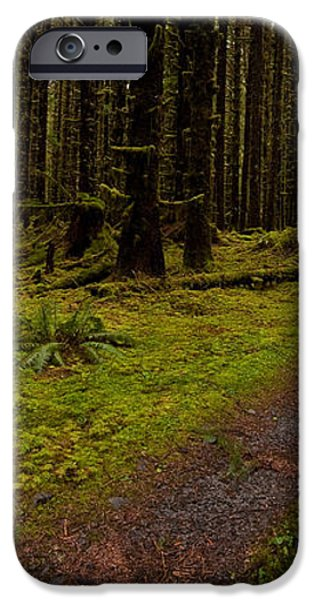 Hoh Rainforest Road iPhone Case by Mike Reid