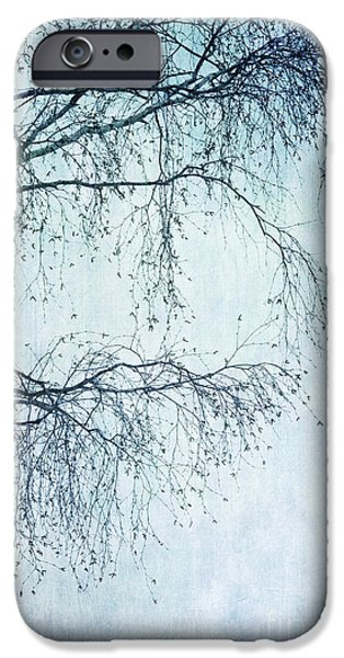 Birch iPhone Cases - Hold On Till Spring Will Come iPhone Case by Priska Wettstein