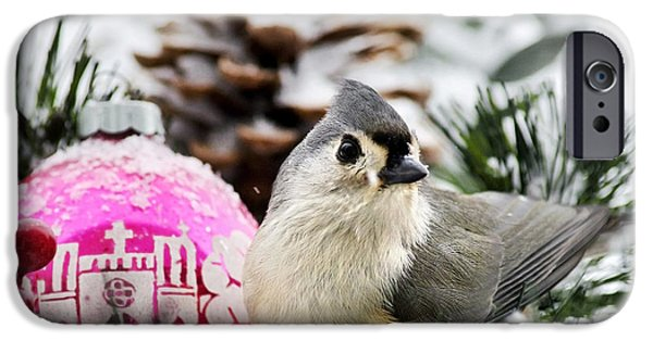 Titmouse iPhone Cases - Holiday Bird Titmouse Square iPhone Case by Christina Rollo