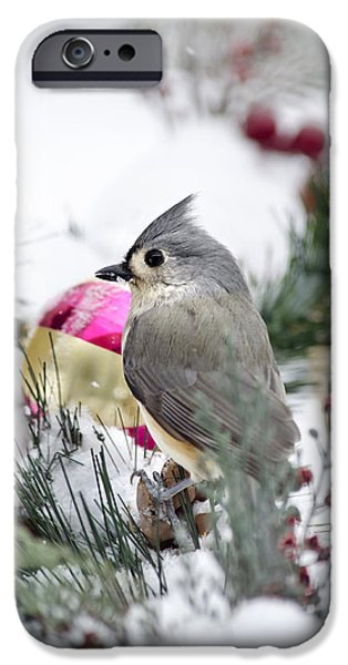 Titmouse iPhone Cases - Holiday Cheer With A Titmouse iPhone Case by Christina Rollo