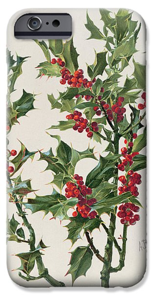 Botanical iPhone Cases - Holly iPhone Case by Alice Bailly