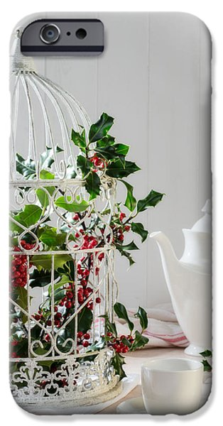 Bird Cage iPhone Cases - Holly and Berries Birdcage iPhone Case by Amanda And Christopher Elwell