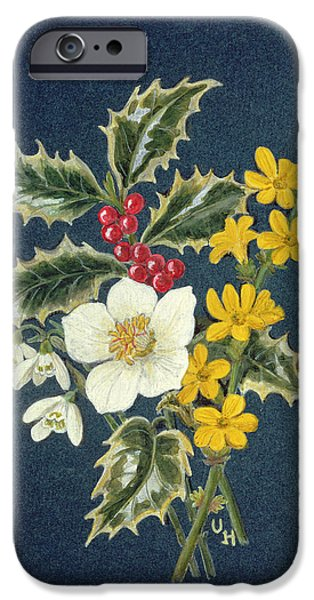 Winter iPhone Cases - Holly, Christmas Rose, Snowdrop And Winter Jasmine Wc On Paper iPhone Case by Ursula Hodgson