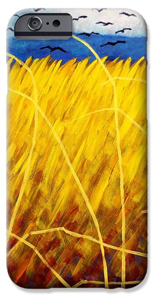 Varnish iPhone Cases - Homage To Van Gogh   cropped iPhone Case by John  Nolan