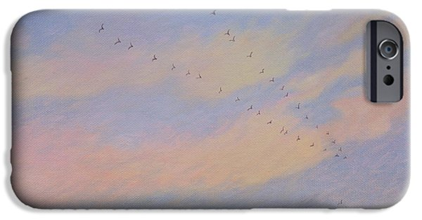 Swallows iPhone Cases - Homeward, 2004 Oil On Canvas iPhone Case by Ann Brain