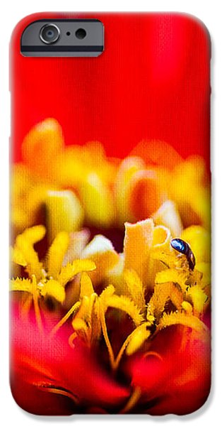 Honey Dew Breakfast iPhone Case by Alexander Senin