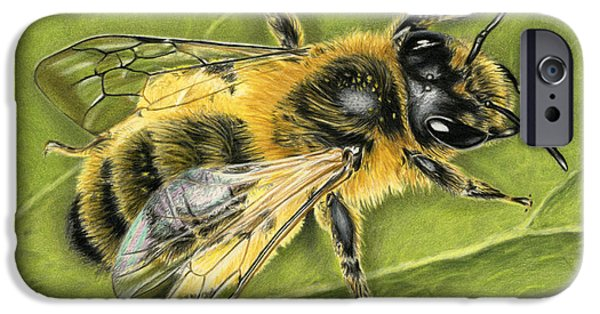Close Up Drawings iPhone Cases - Honeybee On Leaf iPhone Case by Sarah Batalka