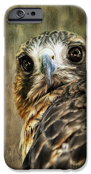 Red Tail Hawk Digital Art iPhone Cases - Honing In iPhone Case by Lois Bryan