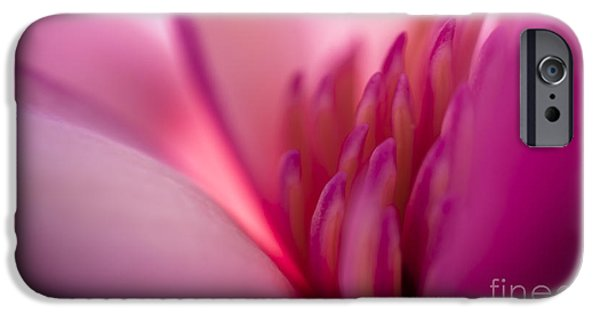 Magnolia iPhone Cases - Hope iPhone Case by Jan Bickerton