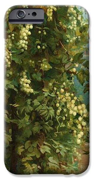 Rural iPhone Cases - Hops 1882 iPhone Case by Philip Hermogenes Calderon